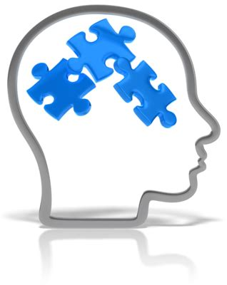 AQA A-level Psychology - Plasticity of Brain Function